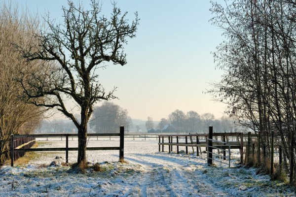 Nieve en la entrada del rancho