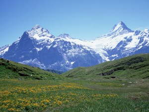 Hermoso prado verde junto a las grandes montañas