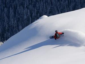 Postal: Practicando snowboard en nieve virgen