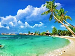 Postal: Impresionante playa con aguas turquesas