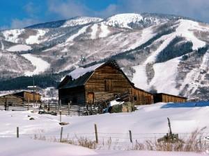 Cobertizos de madera en un lugar cubierto de nieve