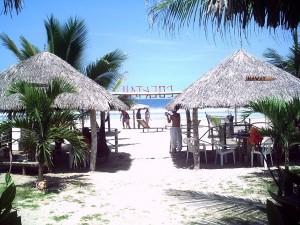 Postal: Maravillosa playa de Libertador Bolívar