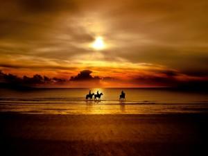 Paseo a caballo por la playa en un bello atardecer