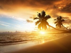 Un cálido atardecer en la playa