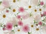 Preciosas rosas y margaritas