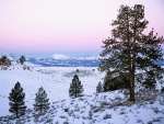 Gran paisaje cubierto de nieve