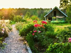 Casa con un bello jardín iluminado por el sol