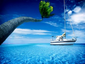 Gran palmera y un barco en el mar