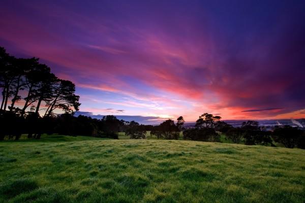 Espectacular cielo sobre prado verde