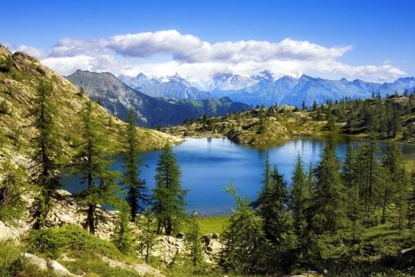 Un pequeño lago entre pinos y montañas