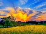 Un espectacular cielo al atardecer