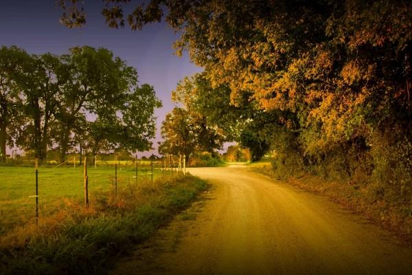 Una carretera de tierra en el campo