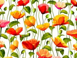 Postal: Sensacional diseño floral con bellas amapolas