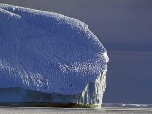 Aves volando junto al iceberg