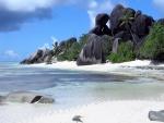 Grandes piedras y vegetación en la playa