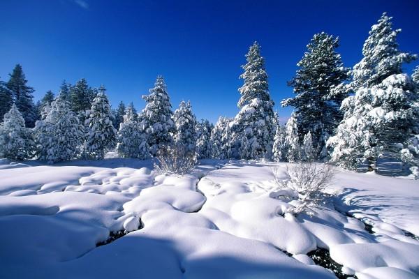 Cielo azul tras una gran nevada