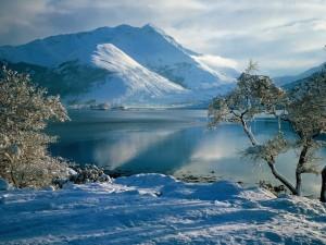 Lago rodeado de nieve