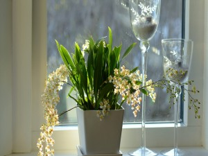 Postal: Brillante arreglo floral junto a una ventana