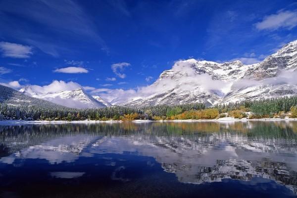 Árboles verdes entre el lago y las montañas