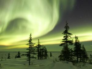Espectacular aurora boreal sobre un campo nevado