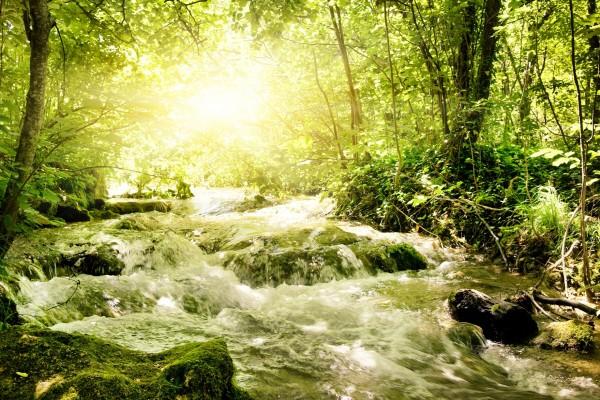 El brillo del sol en un río caudaloso