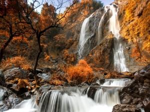 Postal: Espectacular cascada en un paisaje otoñal