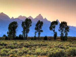 Postal: El sol se asoma y va iluminando las montañas y los árboles