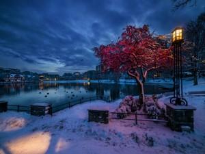 Postal: Crepúsculo invernal en Noruega