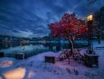 Crepúsculo invernal en Noruega