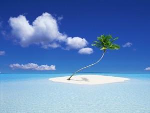 Palmera en una pequeña isla en el mar