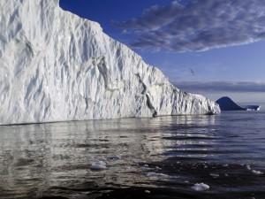 Aves volando junto a un gran iceberg