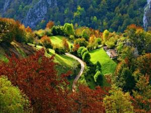 Cabañas de piedra en un bello paisaje otoñal