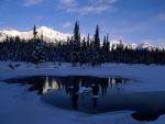 Sol y sombra en un paisaje nevado