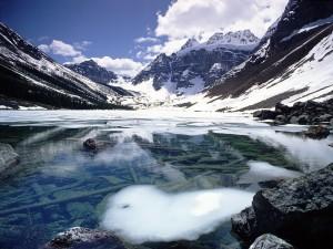 Fina capa de hielo flotando en el lago