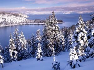 Postal: Bonito paisaje nevado junto a un gran lago