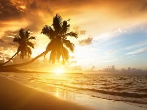 Postal: El sol del atardecer iluminando la playa