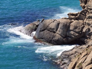 Pequeñas olas golpeando las rocas