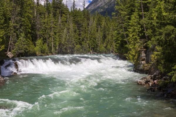 Una pequeña cascada en el gran río del bosque