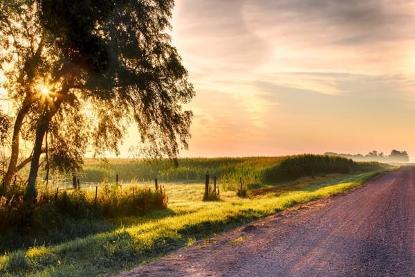 Carretera y campo iluminados por el sol
