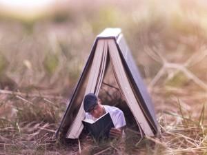 Postal: Leyendo dentro de un gran libro