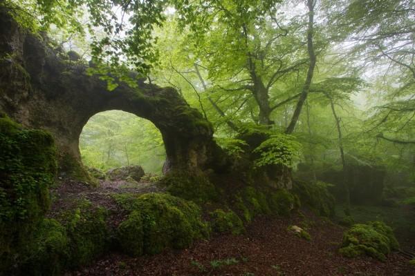 Sensacional arco de piedra en el bosque