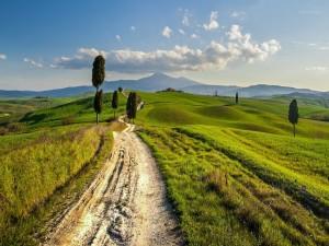 Paisaje rural en las colinas de Toscana (Italia)