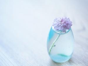 Postal: Crisantemo en un florero de vidrio