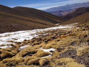 Postal: Arroyo congelado en Abra del Acay, provincia de Salta (Argentina)