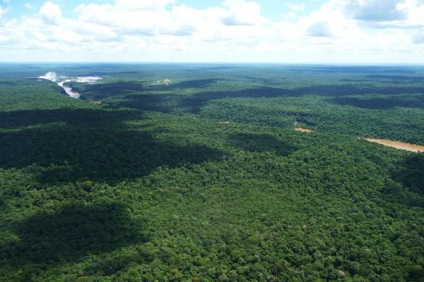 Vista aérea y en la distancia de las Cataratas del Iguazú (Argentina)