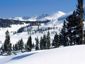 Abundante nieve bajo las montañas