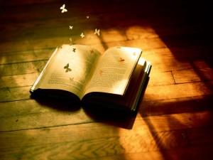 Postal: Mariposas saliendo de las hojas de un libro