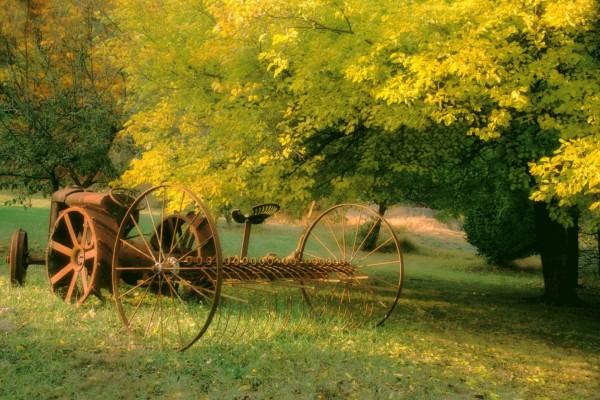 Una vieja segadora en el campo verde