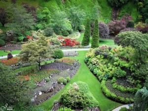 Un bello y cuidado jardín