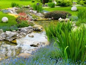 Postal: Un arroyo en un hermoso jardín